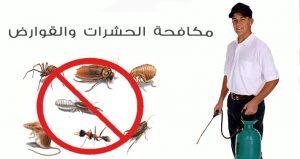 مكافحة حشرات بالمدينة المنورة