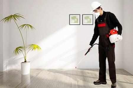 7 طرق هامة للتخلص من النمل في المنزل