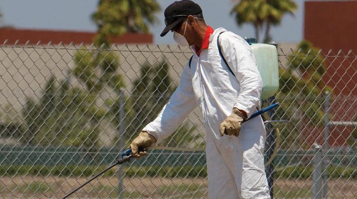 شركة رش مبيدات بالمدينة المنورة
