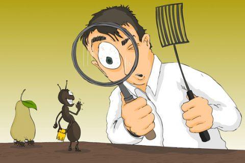 3 طرق فعالة لتنظيف المنزل من الحشرات